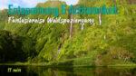 Entspannung, Ruhe & Stressbewältigung | Fantasiereise Waldspaziergang